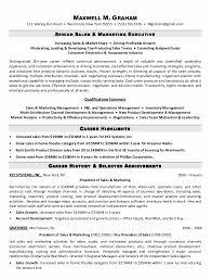 Sample Resume Senior Sales Marketing Executive Page 1