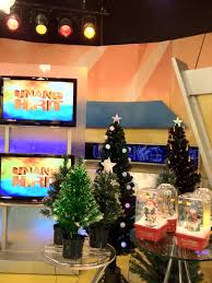 Small Fiber Optic Christmas Trees by Meiji Christmas Items Featured In Unang Hirit