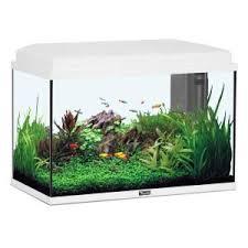 aquarium 60l achat vente aquarium 60l pas cher cdiscount