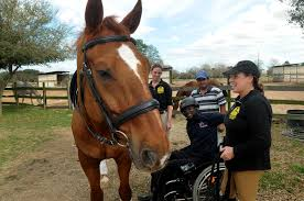 Sugar Land Veteran Trains For Paralympics - Houston Chronicle Stunning Horse Barn Manager Resume Gallery Samples Chris Forster Cfamforster Twitter Working With Horses 15 Of The Best Equine Jobs Horsemart Available Sugar Land Veteran Trains For Paralympics Houston Chronicle Cover Letter Removal Cditional Status Best Creative Essay Hiring Trainers The 1 Resource Farms Stables And Tips To Play Career Profile Job Outlook Cutter Cover Letters Mitadreanocom Farm How To Answer What Was Your Last Salary