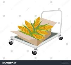 Hand Truck Dolly Loading Cardboard Box Stock Illustration 162355577 ...