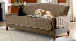 Sofa Pet Covers Walmart by Sofa Dog Sofa Cover Awesome Furniture Wonderful Walmart Couch