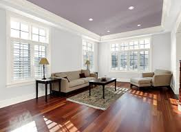 Best Living Room Paint Colors 2018 by Silver Paint Living Room Benjamin Moore Silver Satin Living Room