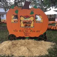 Pumpkin Patch Near Bay Area by 20 Central Florida Pumpkin Patches And Corn Mazes To Put You In