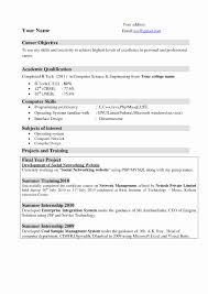 Sample Resume Of Lecturer Computer Science Inspirationa Format For In Puter Best