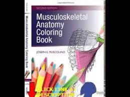 Free Musculoskeletal Anatomy Coloring Book 2e