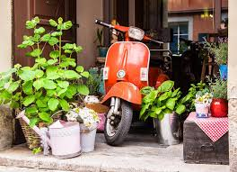 Download Old Vespa Stock Photo Image Of Bike Plant Transportation