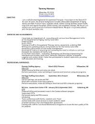Cota L Resume Examples Resumeexamples Physical Therapist Occupational