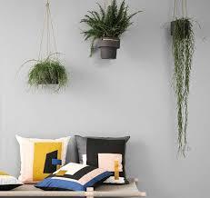 hängepflanzen fürs zimmer schwebende gärten schöner wohnen