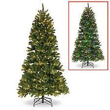 Winter Wonderland 7 Foot Pre Lit Slim Newberry Spruce Christmas Tree