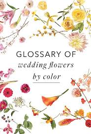 A Glossary Of Wedding Flowers By Color