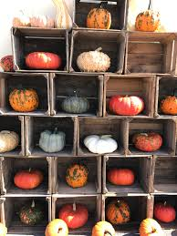 Pumpkin Patch Near Des Moines by Blog U2013 Orr U0027s Farm Market