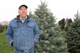Twinsberry Tree Farm Is A 'People's Choice' - Farm And Dairy Ricciardis Tree Farm A Family Tradition Since 1984 Looking For A Christmas Tree Life Culture News Pine Barn Signature Series Wound Warrior Project The Daily Record Ohio Find It Here Christmas Farms In Ohio Rainforest Islands Ferry Wooster Oh Summer 16 Pinterest Catchy Collections Of Fabulous Homes Treehouses Mohicans Rustic Wedding Venue House Will Moses Gallery Green Acres