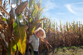 Pumpkin Picking Farms In Lancaster Pa by Outdoor Activities Capitol Momma