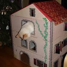 une villa pour votre chat