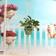 Best Plant For Windowless Bathroom by Windowless Bathroom Plants Bathroom Trends 2017 2018