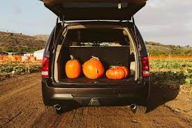 Monrovia Pumpkin Patch by Honda Dealership In Monrovia Ca Sierra Honda