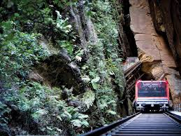 Blue Mountains Tour & Wildlife Experience   Gray Line Iowa 80 Wikipedia Tanya Vomacka Boondock Adventures Haschak Sisters I Wanna Dance Youtube Gray Riordan Wiki Fandom Powered By Wikia The Truck Stop Killer Gq Why Protests Chinas Truck Drivers Could Put The Brakes On Truckers Take Human Trafficking Against Wyoming Walkover States Little Wash Home Facebook