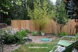 Huckleberry Hollow: July 2016 Caught Attempting To Break The Sound Barrier Zoomies Best 25 Backyard Privacy Ideas On Pinterest Privacy Trees Sound Barriers Dark Bedroom Colors 4 Two Story Outdoor Goods Beautiful Hedges For Diy Barrier Fence Soundproof Residential Polysorptc2a2 Image Result Gabion And Wood Fence Mixed Aqfa10ext Exterior Absorber Blanket 100 Landscaping How To Customize Your Areas With Screens Uk Curtains At Riviera We