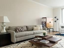 Modern Area Rugs For Living Room Lightandwiregallery