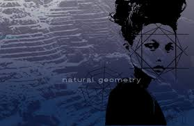 100 Natural Geometry By Carlyle Nuera At Coroflotcom