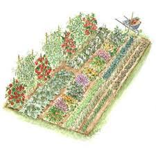 Plush Design Ideas Ve able Garden Design Layout Garden Planning