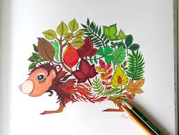 Hedgehog Colored Page From The Enchanted Forest Coloring Book