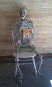 63 best skeletons images on pinterest halloween ideas halloween