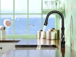 Moen Brantford Kitchen Faucet Oil Rubbed Bronze by Moen Ntford Kitchen Faucet Pull Down Kitchen Design Ideas