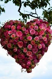 113 best Heart Shaped Flowers images on Pinterest