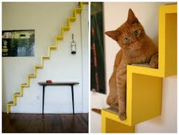 cat stairs cat shelves yes you read that right plaster disaster