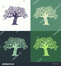 Hand drawn graphic olive trees set on different backgrounds Vector illustration for labels packs