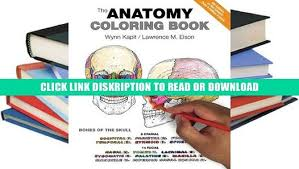 Kapit Anatomy Coloring 4th Edition Book The