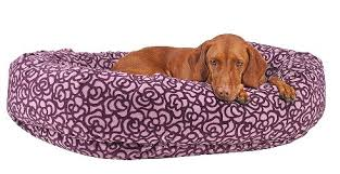 donut bed pet beds