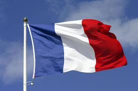 French Large Plastic Letter N Pedlars