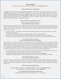 Resume Examples For Young Adults Delighted Cfi Template Inspiration Entry Level