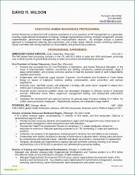 Sample Resume For Experience Software Engineer Resume For Software