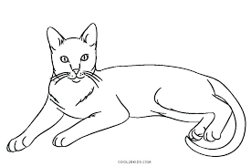Cat Face Coloring Page Pages Of A Cats