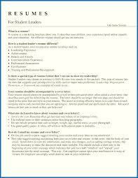 12-13 Examples Of Project Management Skills | Lasweetvida.com 1213 Examples Of Project Management Skills Lasweetvidacom 12 Dance Resume Examples For Auditions Business Letter Senior Manager Project Management Samples Velvet Jobs Pmo Cerfication Example Customer Service Skills New List And Resume Functional Best Template Guide How To Make A Great For Midlevel Professional What Include In Career Hlights Section 26 Pferred Sample Modern 15 Entry Level Raj Entry Level Manager Rumes Jasonkellyphotoco