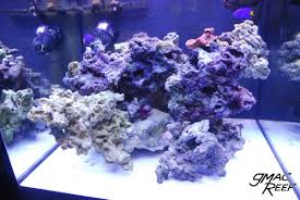 Reef Tank Rockscape: How To Drill And Cement Your Live Rock | Gmacreef Aquarium Aquascaping Rocks Aquascape Designs Ideas Project Reef Rock 21 Dry Walt Smith Bulk Supply Review Real Generation 4 Digitalreefs News Info How To Live Purple Live Rock Youtube Updated Clear Pics Newbies Attempt At Aquascaping So Far 3reef Design Aquafishvietcom Bring Back The Wall News Builders Keeping Austin Club Walls For A Tank Callorecom River Suggestion Planted Forum