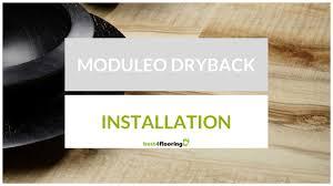 Moduleo Vinyl Plank Flooring by Installation Video For Moduleo Dryback Flooring Youtube