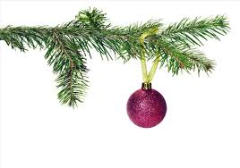 Christmas Tree Types Canada by Cheap Pre Lit Christmas Trees Tags Christmas Tree With No Lights