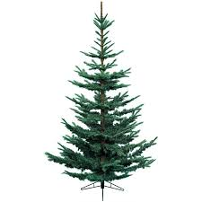 8ft Christmas Tree by Kaemingk Nobilis Fir Blue Christmas Tree 8ft Charlies Direct