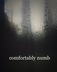 I have be e fortably numb 📼💽📺 on We Heart It