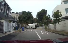 100 Siglap Road VIDEO Driverless Van Rolls Backward Down Hill Crashes Into