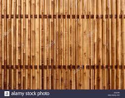 100 Bamboo Walls Bamboe Wand Fractal Wall Panels And Palm Wood