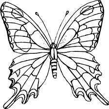 Coloring Page Butterfly Difficult Pages For Adults To Download