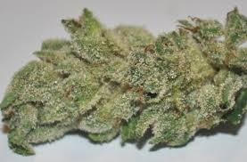 The Best Weed Strains For Smoking Before Sleep and For Insomnia