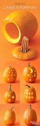 Pumpkin Faces To Carve by 187 Best Jack O U0027 Lantern Ideas Images On Pinterest Halloween