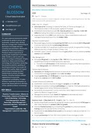 C-level Sales Executive Resume Sample By Hiration Executive Resume Samples Australia Format Rumes By The Advertising Account Executive Resume Samples Koranstickenco It Templates Visualcv Prime Financial Cfo Example Job Examples 20 Best Free Downloads Portfolio Examples Board Of Directors Example For Cporate Or Nonprofit Magnificent Hr Manager Sample India For Your Civil Eeering Technician Valid Healthcare Hr Download